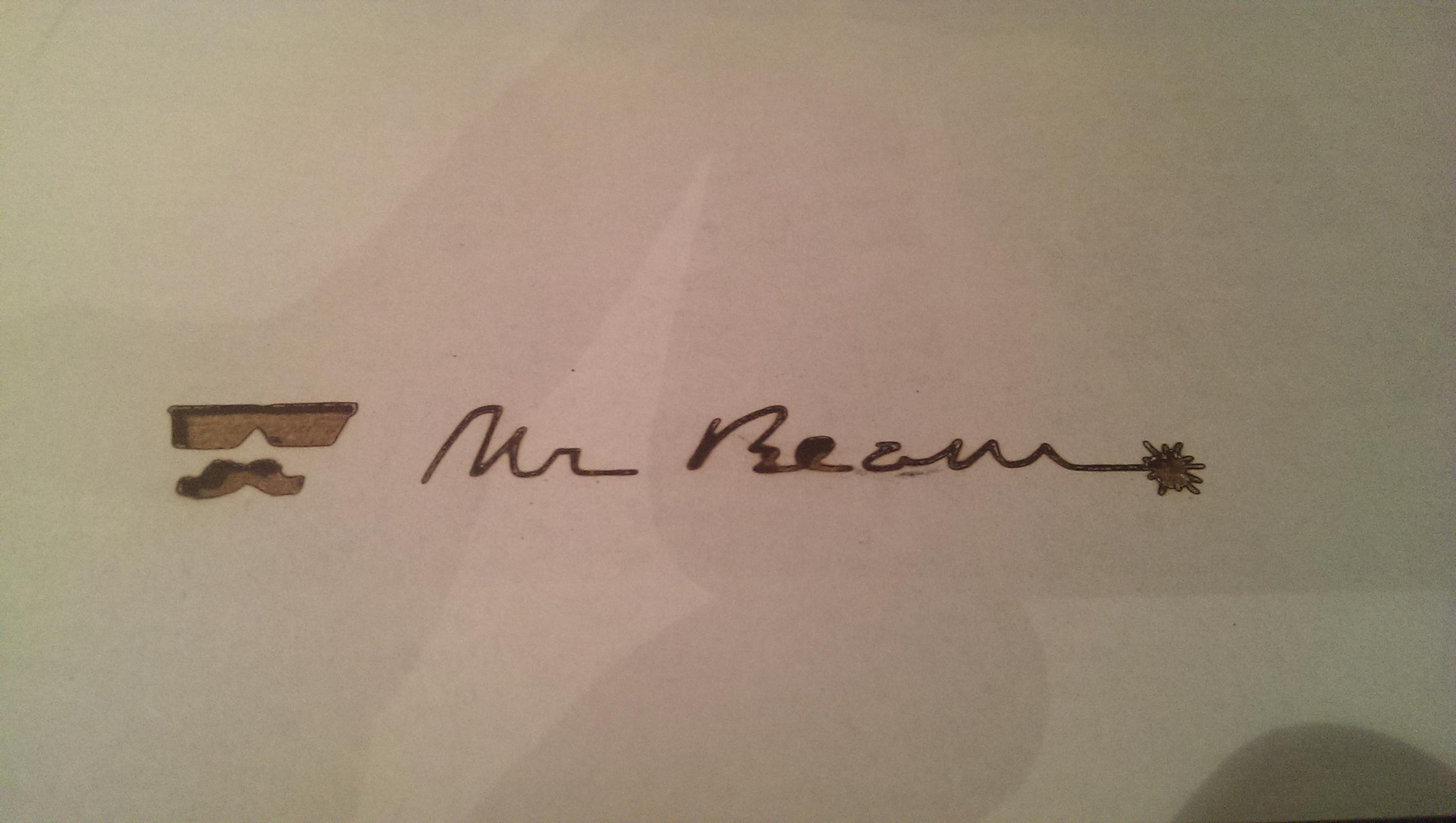 Mr Beam lasered
